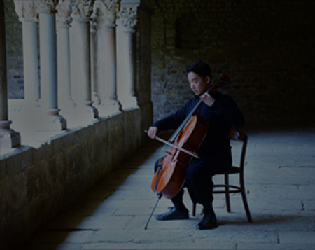 only one cello photo 1